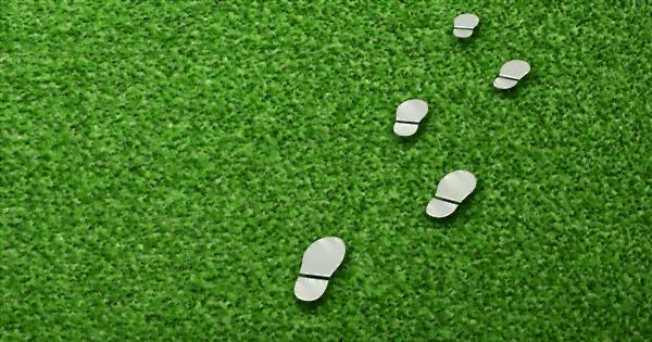 芝生と足跡